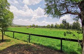 Countryside Estate near San Miguel de Allende