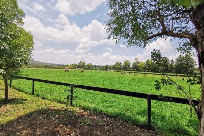 Countryside Estate next Laja River