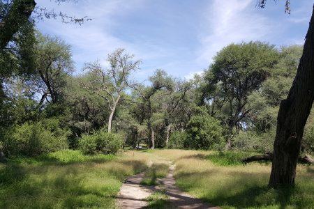 Enchanting Land in Hot Springs Water Area