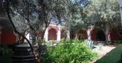 XXVIII Century Ex-Hacienda