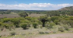 Rancho El Gusano | Great Investment