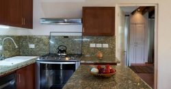 Immaculate Penthouse & Exquisitely Furnished
